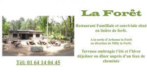 la-foret